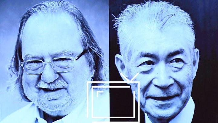 Xərçəng immunoterapiyası nədir? Tibb üzrə Nobel mükafatı laureatlarının kəşfini izah edirik.